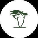 Kenya-Experience Logo