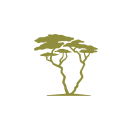 South Africa-Experience Logo