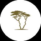 Tanzania-Experience Logo