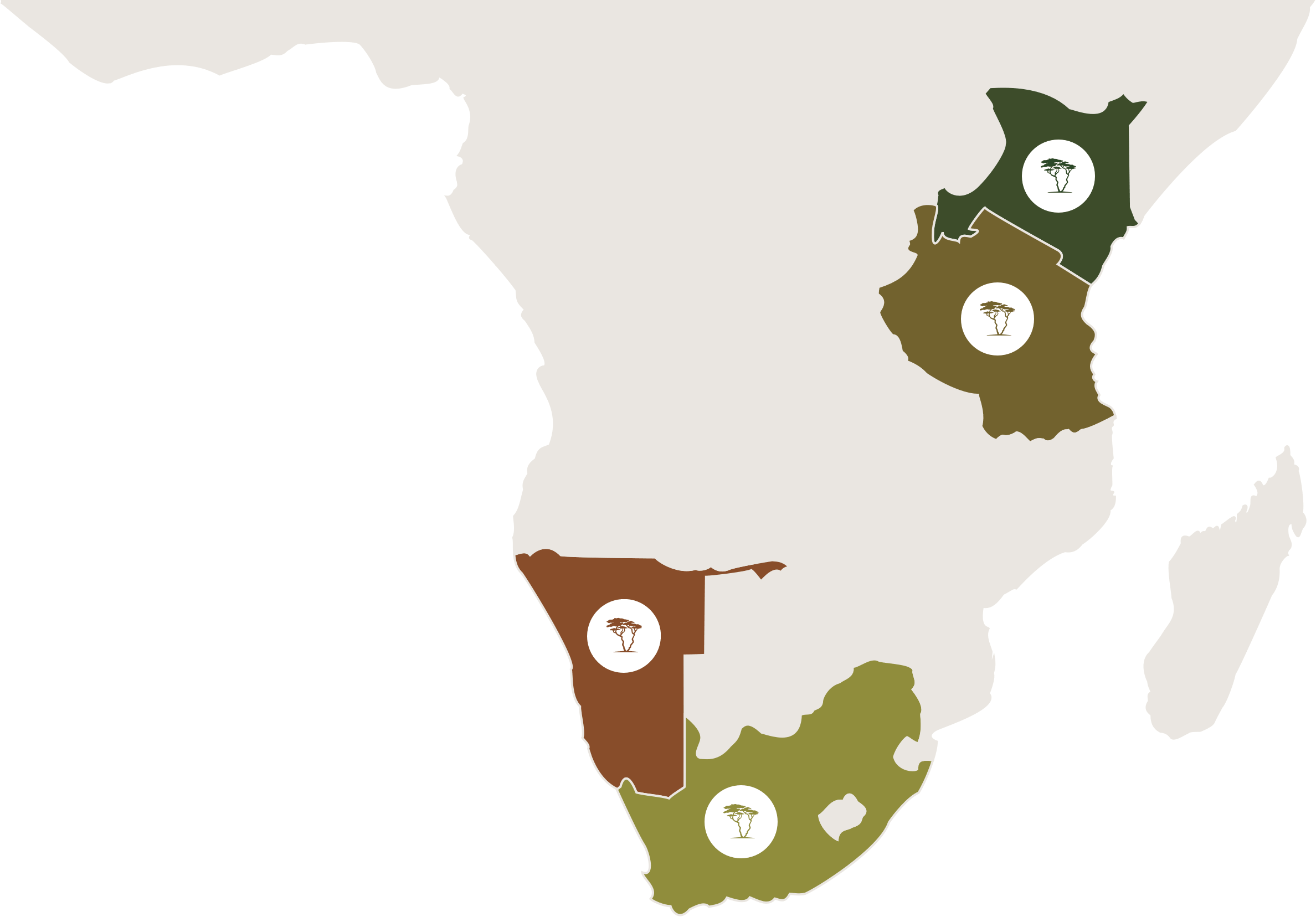 An interactive map of Africa with Africa Experience's destinations of South Africa, Namibia, Tanzania and Kenya highlighted.