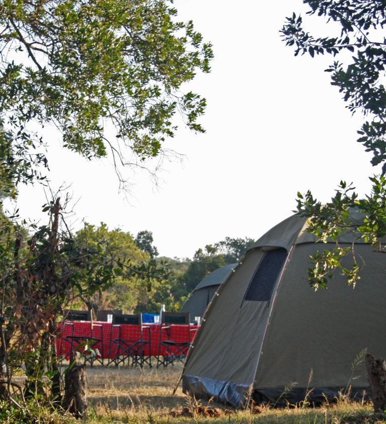 Camping Safaris in Kenya