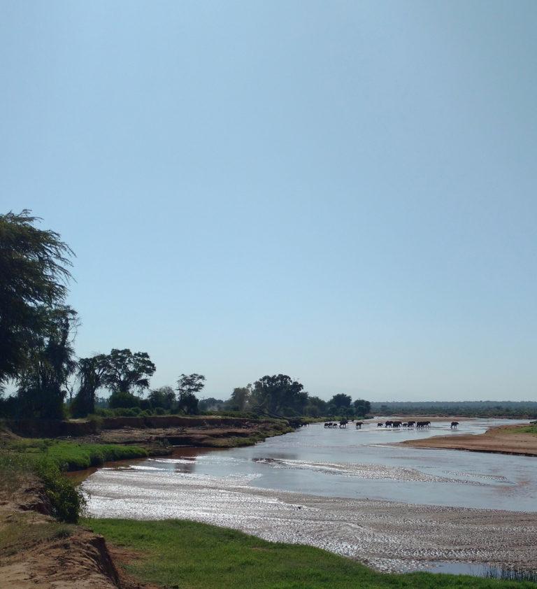 Kenya's Samburu National Reserve