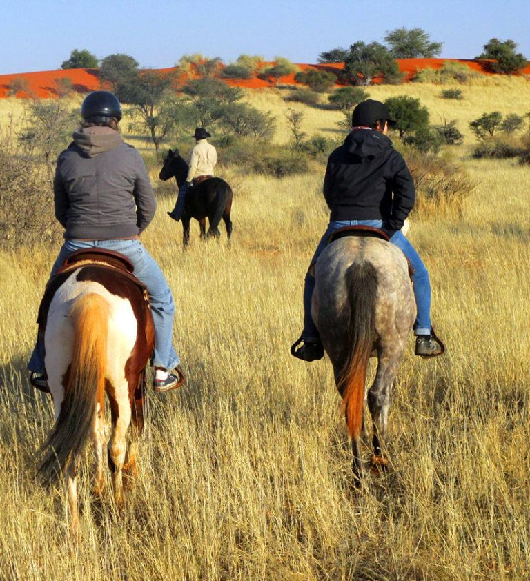 Guest Farms in Namibia