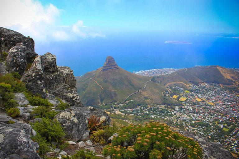 Through the lens of locals: discover Cape Town on a photo tour