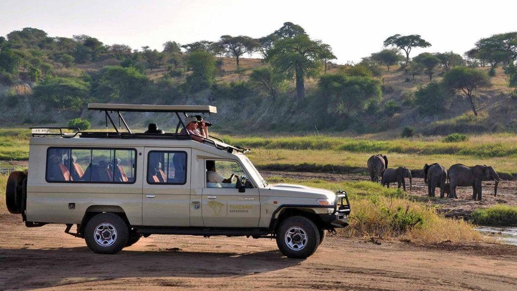 Two travellers observing elephants in the Tarangire River bed from the pop-up roof of their safari vehicle