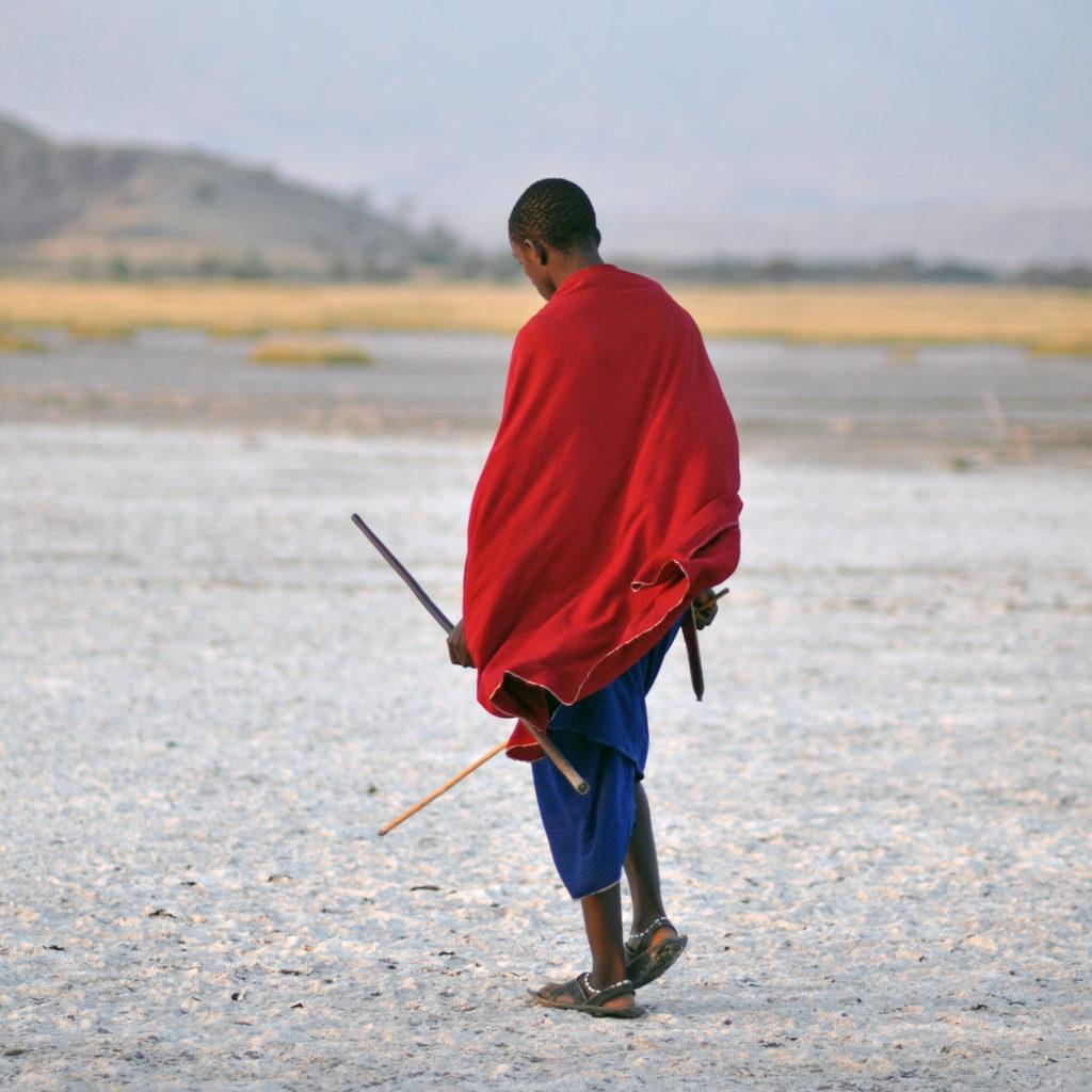 A Masai man covered in a red shuka holding a stick walking near Ol Doinyo Lengai