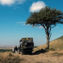 An open safari-vehicle parked underneath a tree, a group of people standing next to it