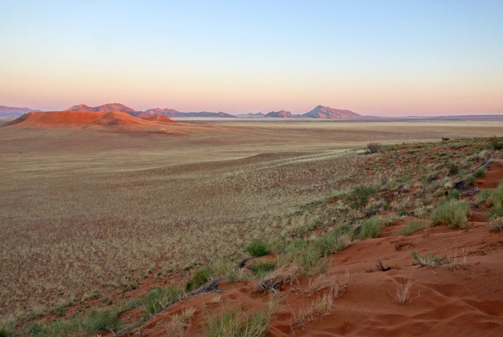 Wide open scenic landscape at sunset in Namibia