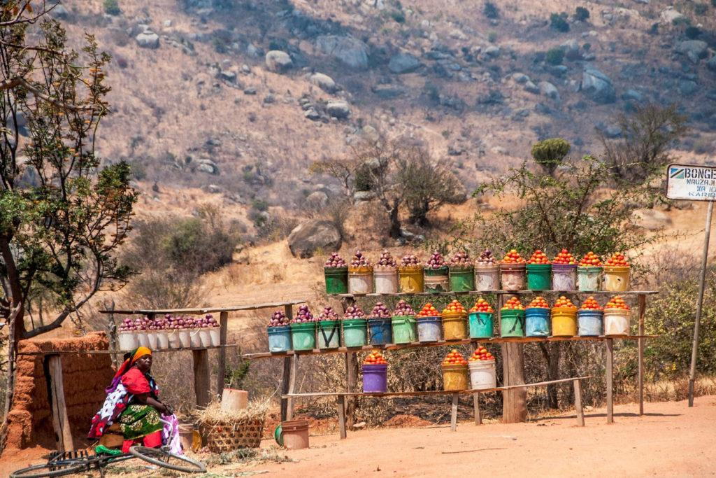 A woman selling fruit lined up in buckets on the side of the road in Southern Tanzania